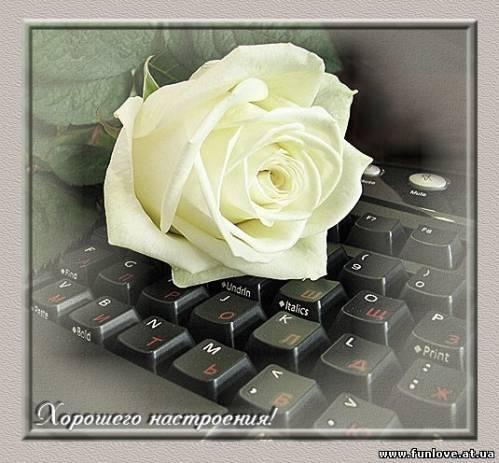http://funlove.at.ua/_ph/39/2/313752268.jpg